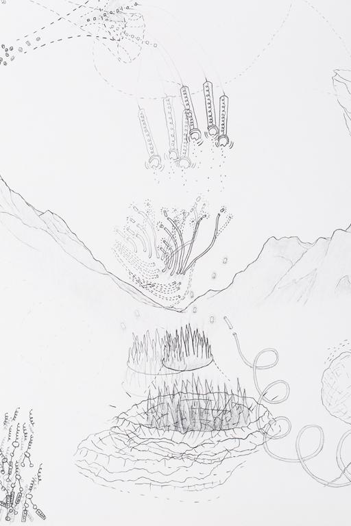 Force Fields Scroll Detail 6