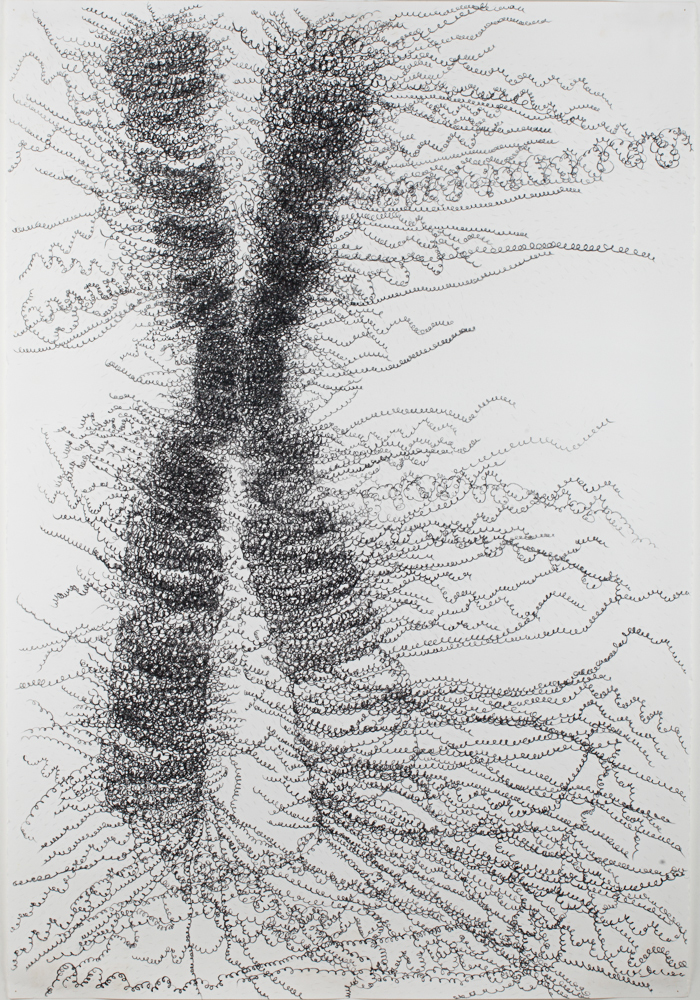 Unravelling Chromosomes